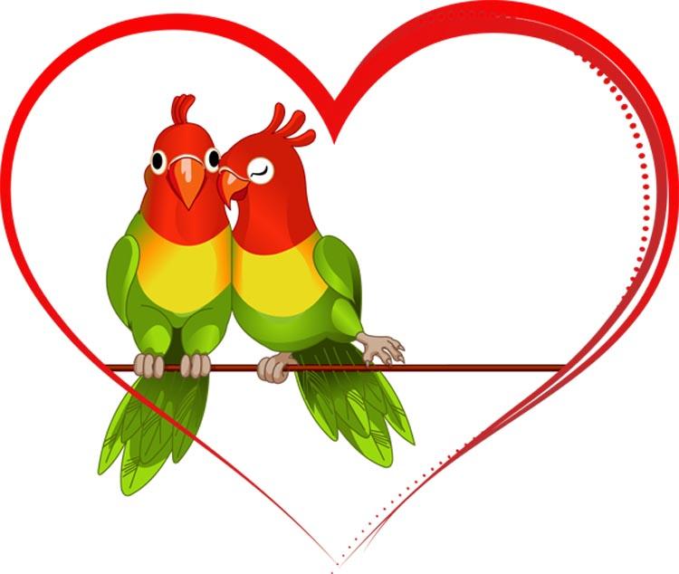 موقع زواج لبناني تعارف الزواج في لبنان صداقة دردشة لبنانية لبنانيات لبنانيين للارتباط الجاد بالحلال